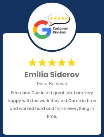 Emilia Siderov Mold Review Roselle IL