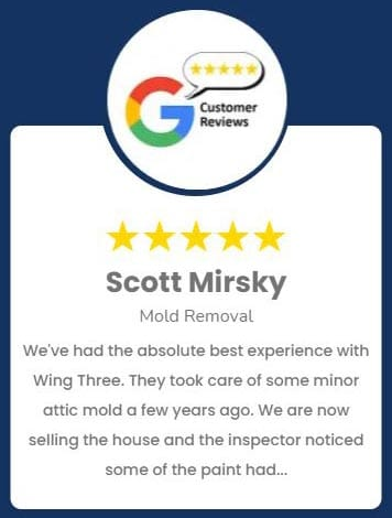 Scott Mirsky Mold Review Roselle IL