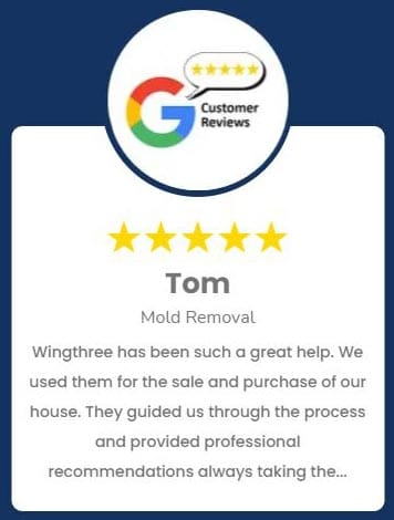 Tom Mold Review Roselle IL